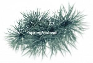 160529_springfestival_pflanze
